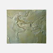 Archaeopteryx fossil Throw Blanket