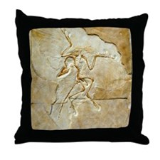 Archaeopteryx fossil, Berlin specimen Throw Pillow