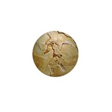 Archaeopteryx fossil, Berlin specimen Mini Button
