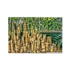 HDR Bamboo Rectangle Magnet