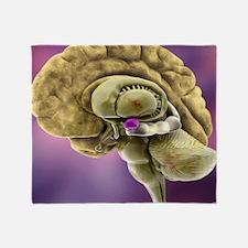 Brain anatomy, 3D artwork Throw Blanket