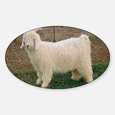 Angora goat Decal