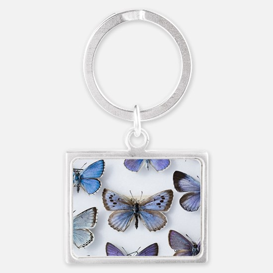 British large Blue butterfly co Landscape Keychain