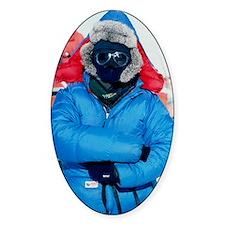 Antarctic researcher Decal