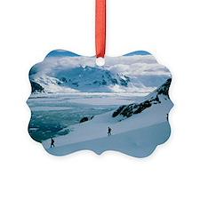 Antarctic climbing Ornament