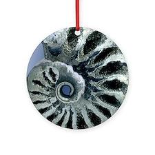 Ammonite fossil Round Ornament