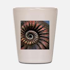 Ammonite fossil Shot Glass