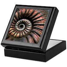 Ammonite fossil Keepsake Box