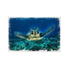 Aquatic Sea Turtle Rectangle Magnet
