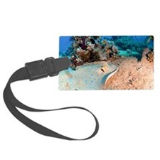Blue-spotted stingray Luggage Tag