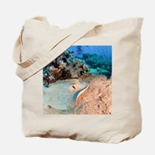 Blue-spotted stingray Tote Bag