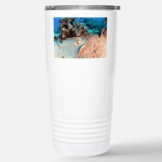 Blue-spotted stingray Stainless Steel Travel Mug