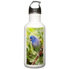 Blue-headed parrot Sports Water Bottle