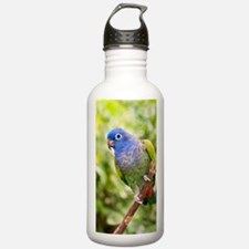 Blue-headed parrot Water Bottle