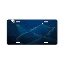 Almadraba fishing, Spain Aluminum License Plate