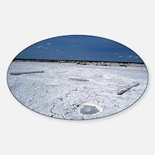 Alkalized soil Decal