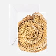 Ammonite fossil, artwork Greeting Card