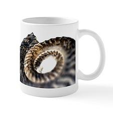 Ammonite fossil Mug