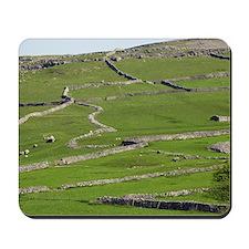 Agricultural landscape, Yorkshire Dales Mousepad