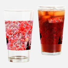 Blood clot, SEM Drinking Glass