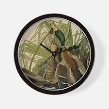 Mallard duck Audubon Bird Vintage Print Wall Clock