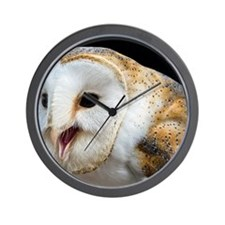 Barn owl calling Wall Clock
