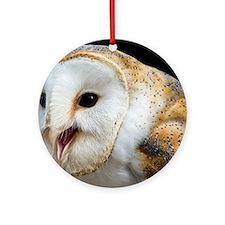 Barn owl calling Round Ornament