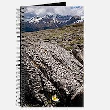 Banff National Park, Canada Journal