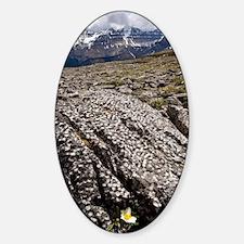 Banff National Park, Canada Decal