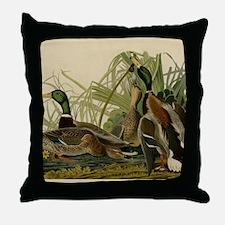 Mallard duck Audubon Bird Vintage Pri Throw Pillow