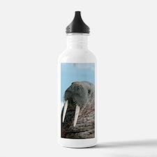 Atlantic walrus Water Bottle