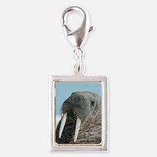 Atlantic walrus Silver Portrait Charm