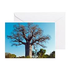 Adansonia madagascariensis baobab tr Greeting Card