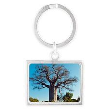 Adansonia madagascariensis baob Landscape Keychain