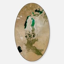 Aral Sea, satellite image, 2010 Decal