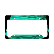 A polished slab of malachite License Plate Holder