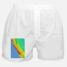 1906 San Francisco quake intensity ma Boxer Shorts