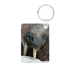 Atlantic walrus Keychains