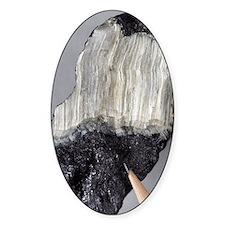 Asbestos mineral Decal