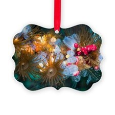 Anemones and sea squirts Ornament