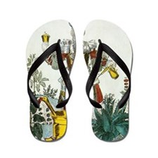 Apothecary, satirical artwork Flip Flops