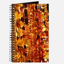 Amber jewellery Journal
