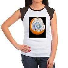 Animal cell anatomy, ar Women's Cap Sleeve T-Shirt