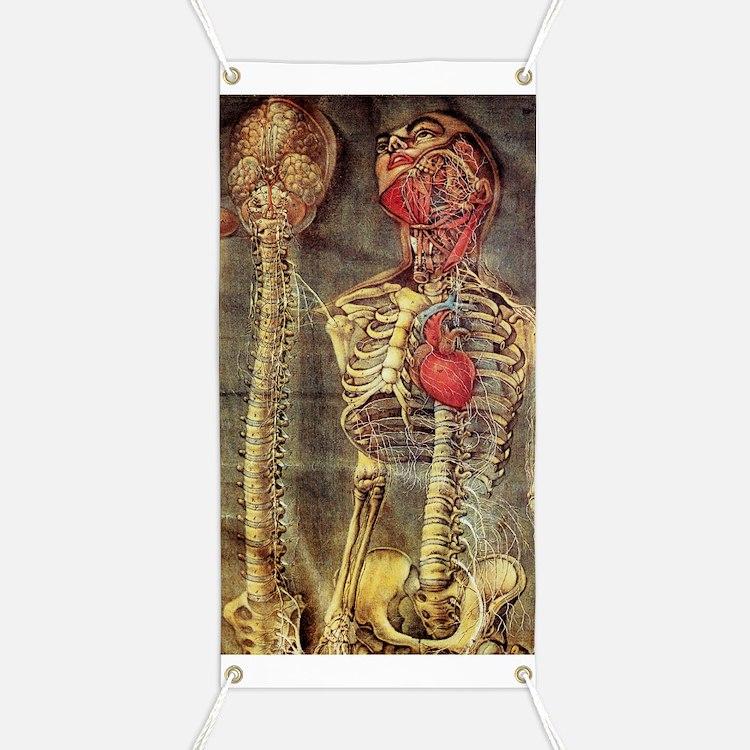 Anatomical model, 18th century Banner