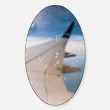 Aircraft window ice crystals Sticker (Oval)