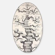 1874 Haeckel first full 'tree of li Sticker (Oval)