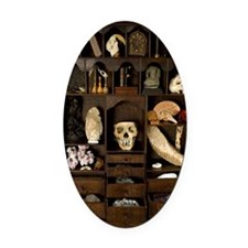 A cabinet of Curiosities Oval Car Magnet