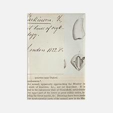 1822 First description of dinosau Rectangle Magnet
