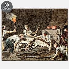 1770 Maastricht Mosasaur Puzzle