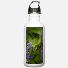 The Mantis Water Bottle